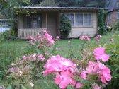 Parduodamas sodas su nameliu sodų bendrijoje