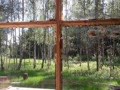 Miško spa - molio šiaudų namelis
