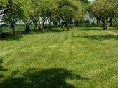 Parduodamas sklypas - sodyba Svirnaviečių km.