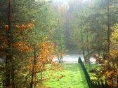 Išskirtinis sklypas su vaizdu į Neries upę,