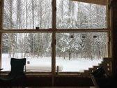 Miško spa - molio šiaudų namelis - nuotraukos Nr. 4