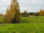 Parduodama sodyba Plutiškių gyvenvietėje su