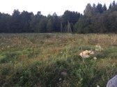 Parduodami sklypai po 25 аrus, šalia miško.