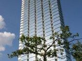 Išnuomuojamas 2 kambarių butas 12 aukšte su