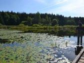 Parduodamas 70 arų sklypas greta Stripūnų ežero
