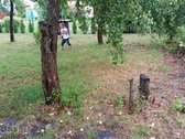 Parduodamas sodas su nameliu.vanduo sklype