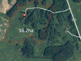 Parduodama sodyba su 16,2 ha žemės sklypu.